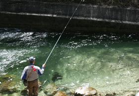 「渓流釣り」の画像検索結果
