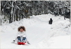 Enjoy sledding